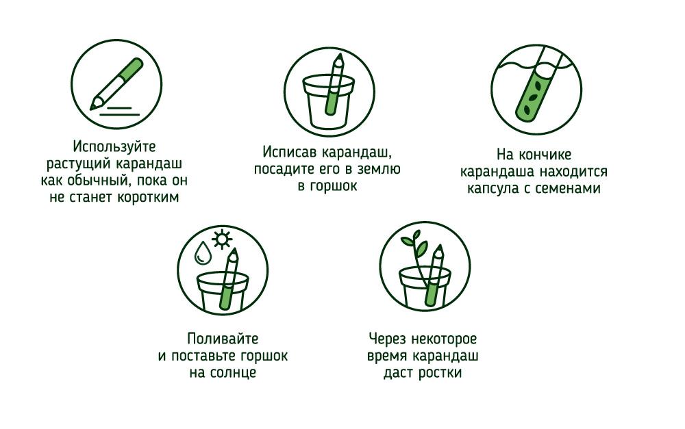 how-to-grow-pic.jpg